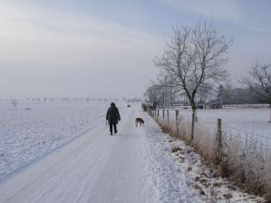 free to use man and dog walking in snow